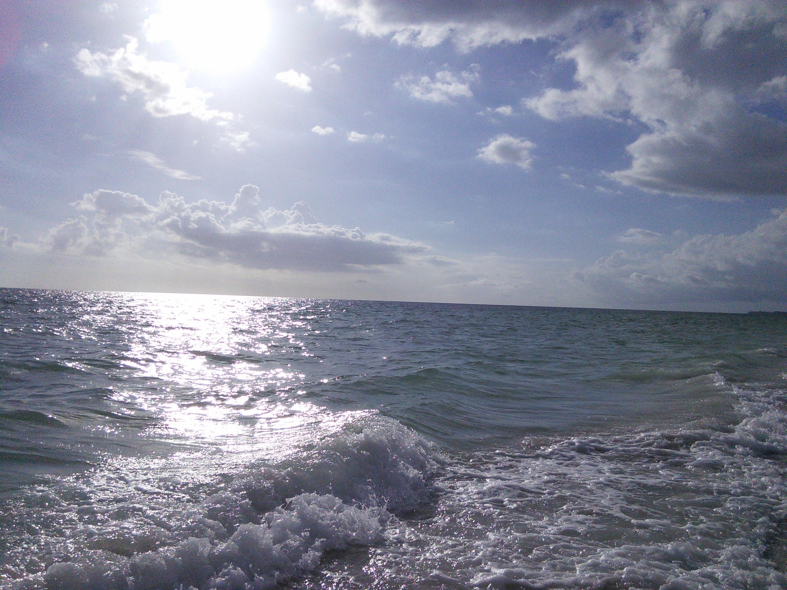 Anna Maria Island Pictures
