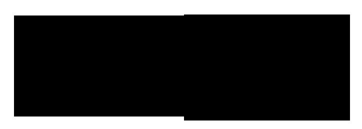 Investment Company Logo Example