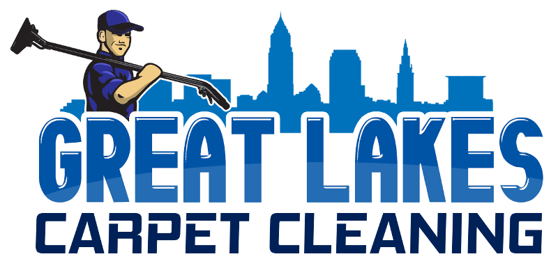 Carpet Cleaning Company Logo Example