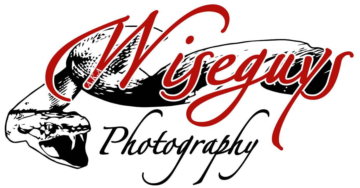 Photography Company Logo Example