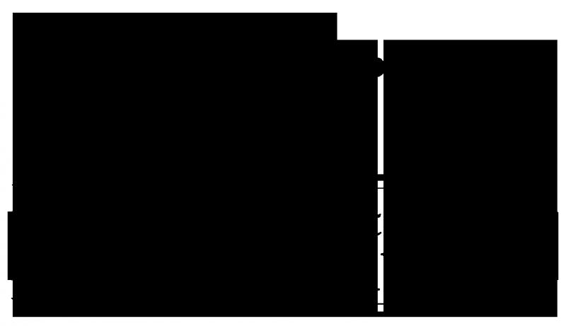 Organization Logo Example
