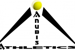 Athletic Company Logo Example
