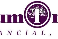 Financial Company Logo Example