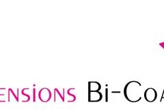Hair Company Logo Example