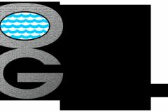 Pool Company Logo Design Example