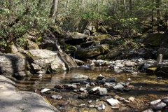 Otter Falls Trail, NC - May 9, 2020