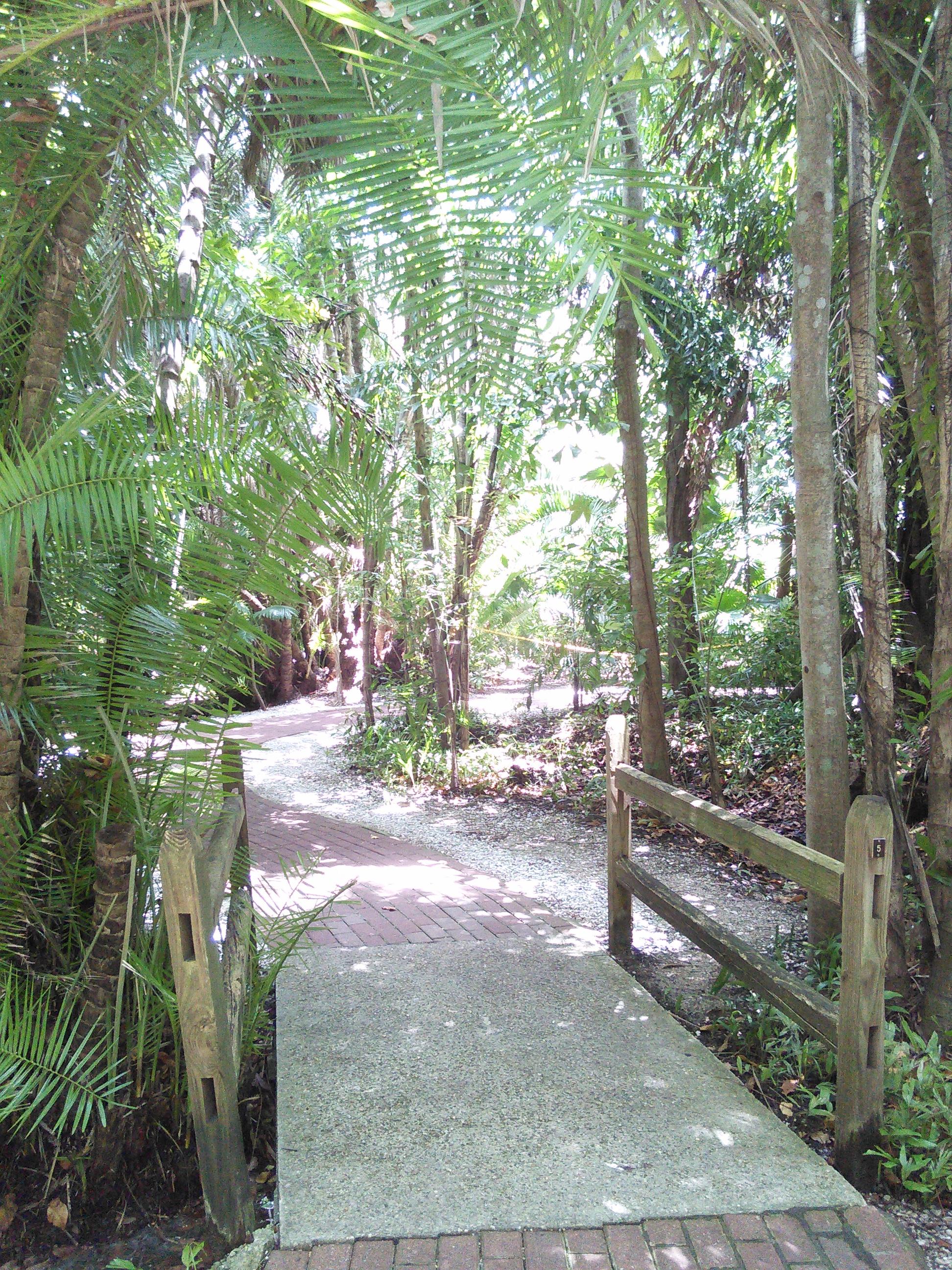 Jungle Gardens Sarasota Garden Ftempo