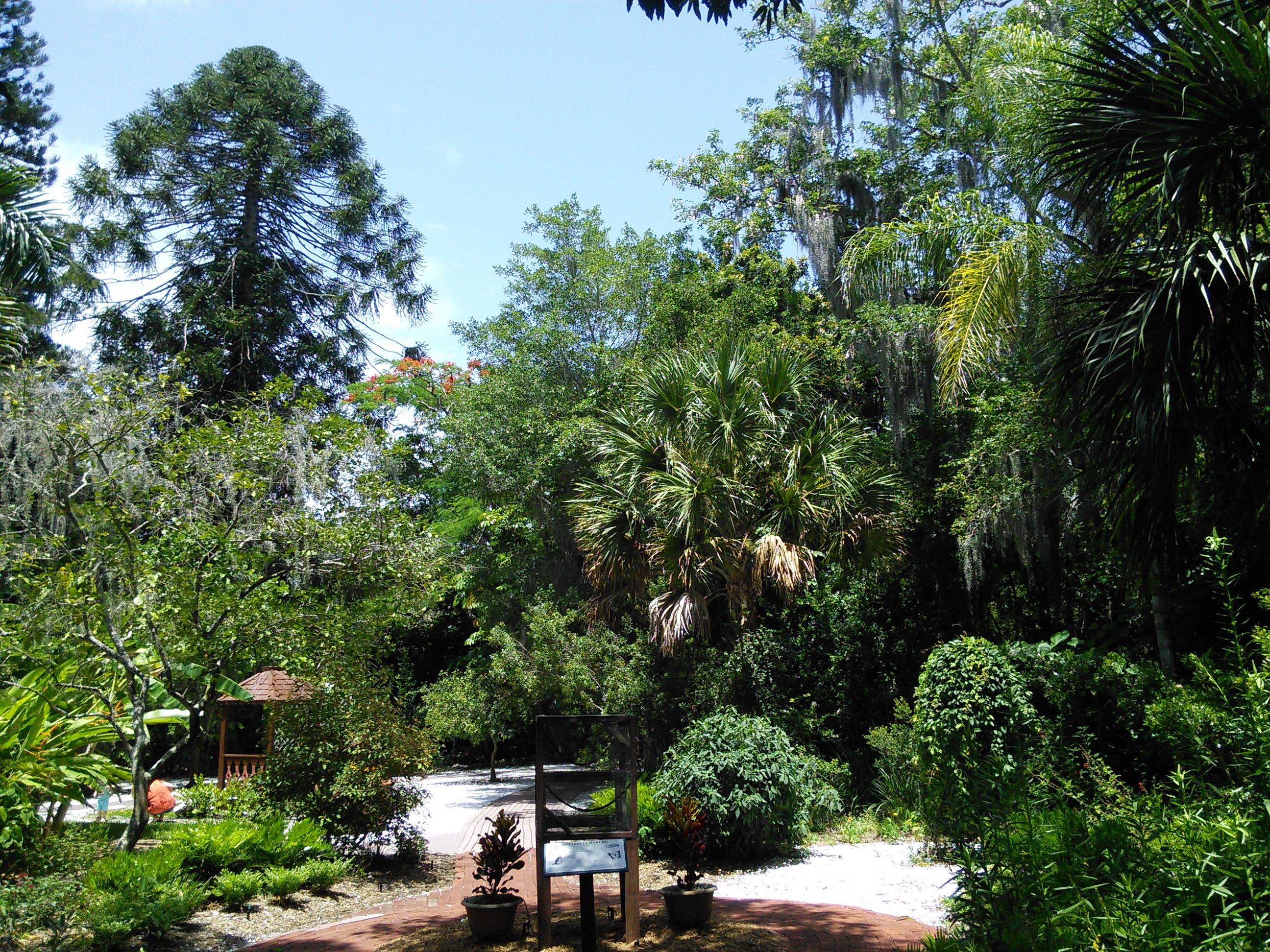 Sarasota Jungle Gardens_6