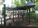Sarasota Jungle Gardens_5