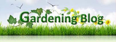 Gardening Graphic