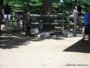 Petting Zoo at Grant's Farm