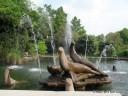 Fountains & Sea Lion Statue