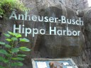 Anheuser Busch Hippo Harbor