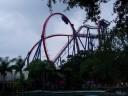 Roller Coaster - SheiKra