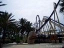 Roller Coaster - Montu