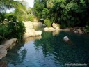 Discovery Cove Landscaping