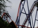 SheiKra 90-degree Drop