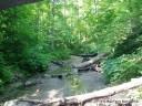 Trail 3 at Turkey Run State Park