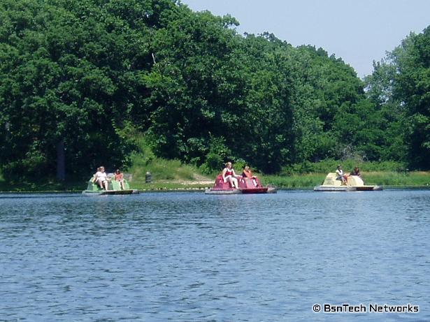 Paddle Boats for Rent