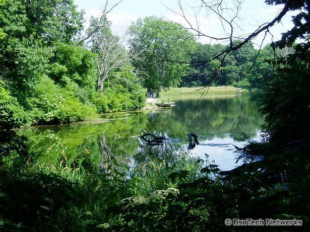 Weldon Springs Lake Cove