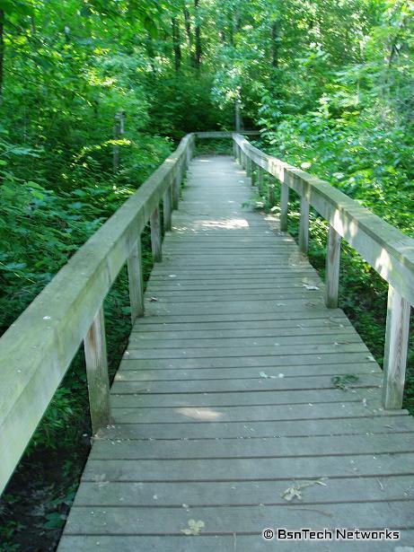 Long Bridge on Lakeview Trail