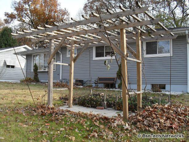 Grape Arbor / Grape Trellis