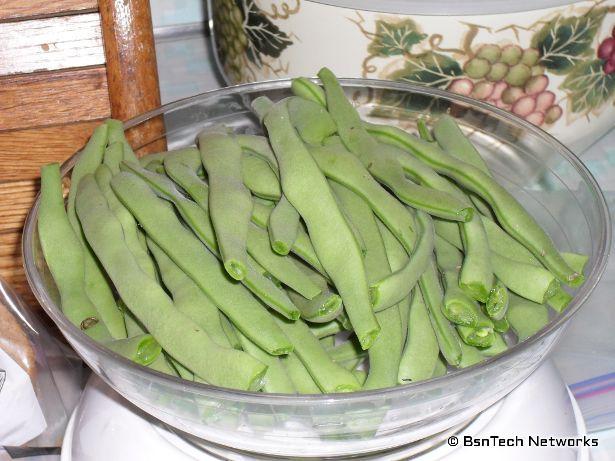 Greencrop Green Beans