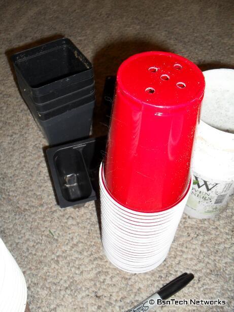 16-Ounce Cups