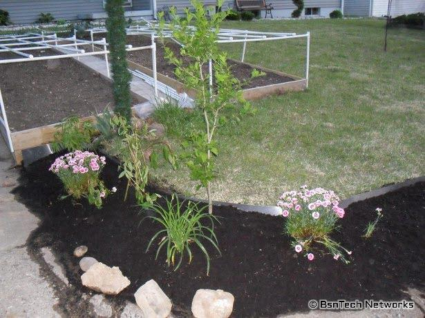 Curb Appeal Project