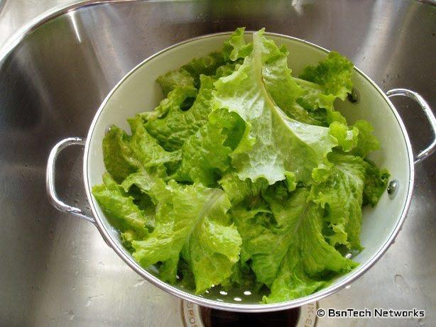 Lettuce Pickings