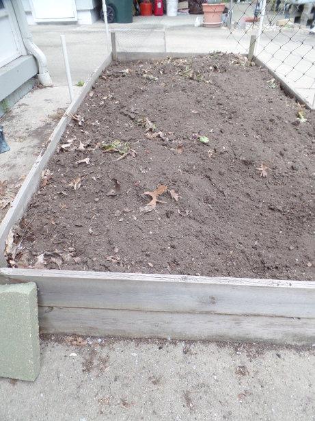 Lettuce Garden Bed
