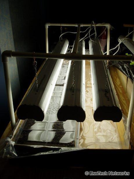 Fluorescent Lights for Starting Seeds