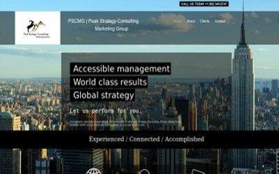Consulting Company Website Design